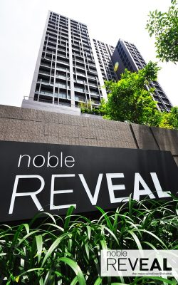 Noble Reveal