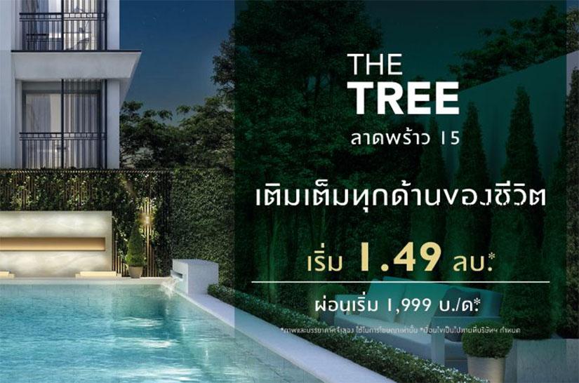 The-tree-ladprao15