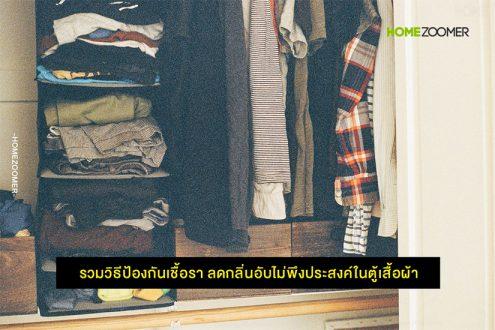 รวมวิธีป้องกันเชื้อรา ลดกลิ่นอับไม่พึงประสงค์ในตู้เสื้อผ้า