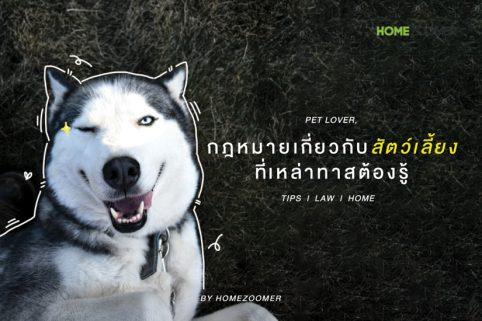 กฎหมายเกี่ยวกับสัตว์เลี้ยง ที่เหล่าทาสต้องรู้