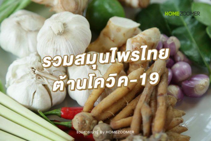 รวมสมุนไพรไทย ต้านโควิค-19